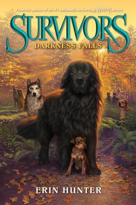 Darkness Falls By Hunter, Erin